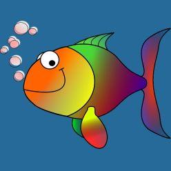 Ratgeber zur Haltung von Fischen im Aquarium